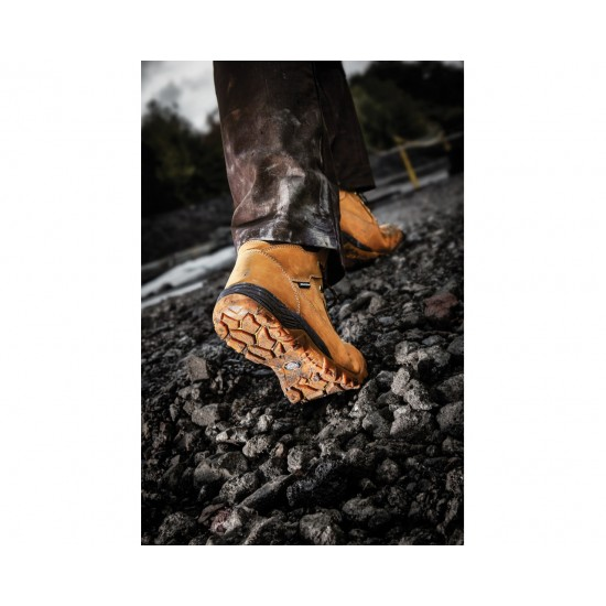 Dickies Graton Safety Boots FD9207